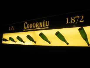 codorniu 010