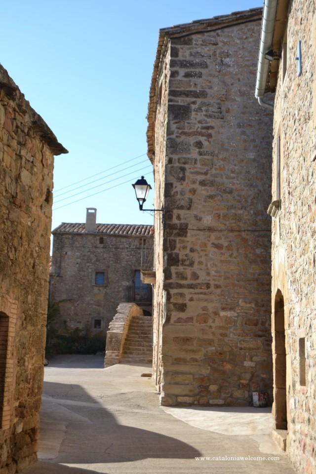 pobles.pinos (5)