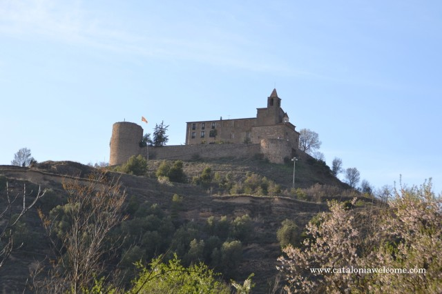 patrimoni.castellvell1