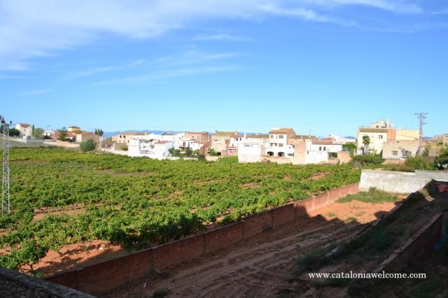 pobles.rodonya1
