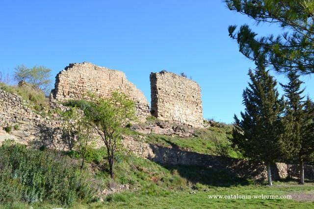 castellsallent1