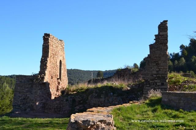 castellsallent2
